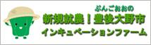 新規就農 豊後大野市インキュベーションファーム 公式ホームページ